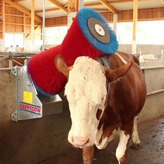 Cow Brush Wall Mounted Single