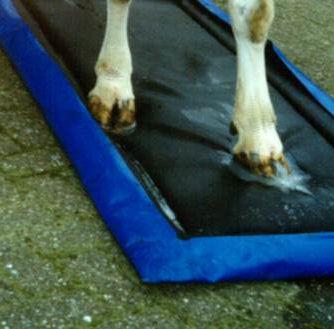 Cattle hoof mat