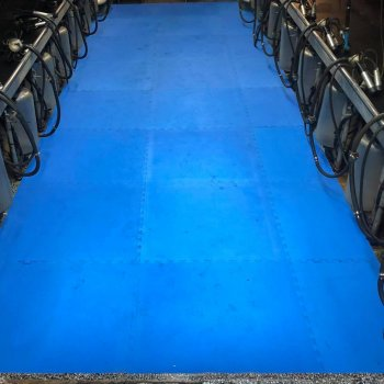 Milking parlour pit fitted with EVA mats