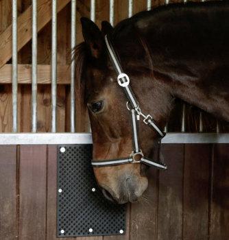 Scratching mat for horses